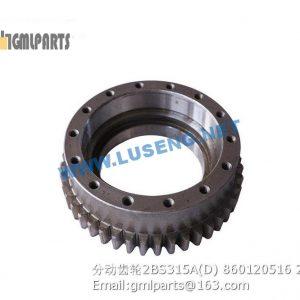 ,gear 2BS315A(D) 860120516 xcmg