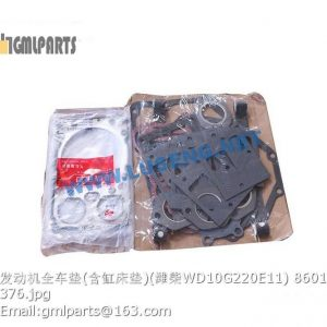 ,OVERHAUL REPAIR KITS WD10G220E11 860118561