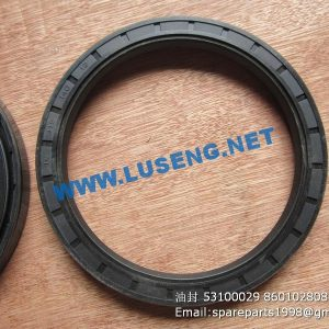 ,OIL SEAL 53100029 860102808 FB115*140*12 SP105579 W44002088 4110001903114