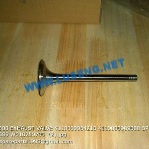 ,12159608 EXHAUST VALVE 4110000054215 4110000909080 SP105244 SP105389 W010250700