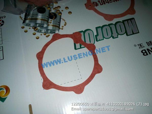 ,12200650 WATER PUMP GASKET 4110000189026