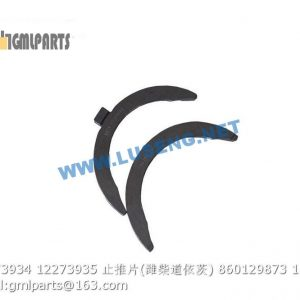 ,860129873 12273934 12273935 THRUST BEARING