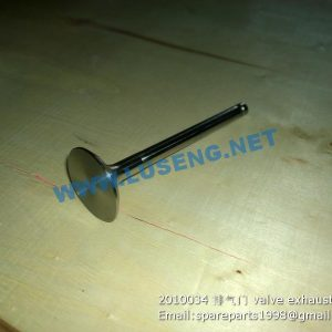,2010034 valve exhaust WEICHAI WP2.1 PARTS