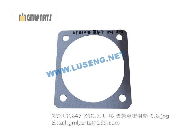 ,252100847 Z5G.7.1-16 Seal packing