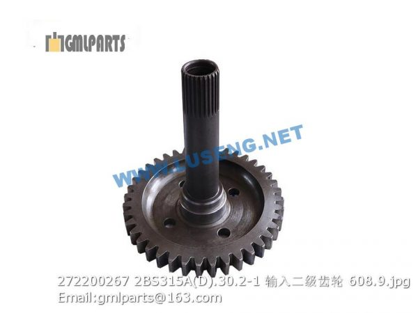 ,272200267 2BS315A(D).30.2-1 Secondary Stage Input Gear