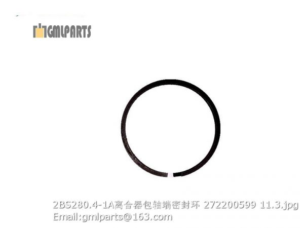 ,2BS280.4-1A snap ring 272200599