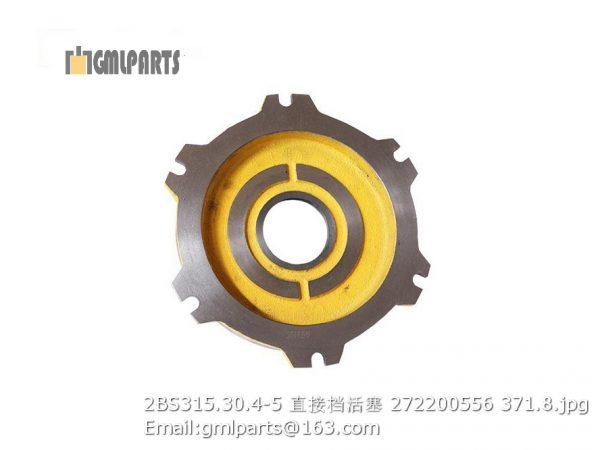 ,2BS315.30.4-5 272200556 XCMG Direct Forward Piston