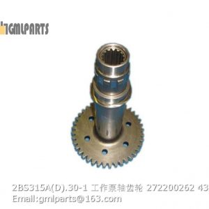 ,2BS315A(D).30-1 Working Pump Shaft Gear 272200262