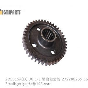 ,2BS315A(D).30.1-1 Output Shaft Gear 272200265