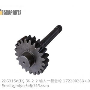 ,2BS315A(D).30.2-2 Primary Stage Input Gear 272200268
