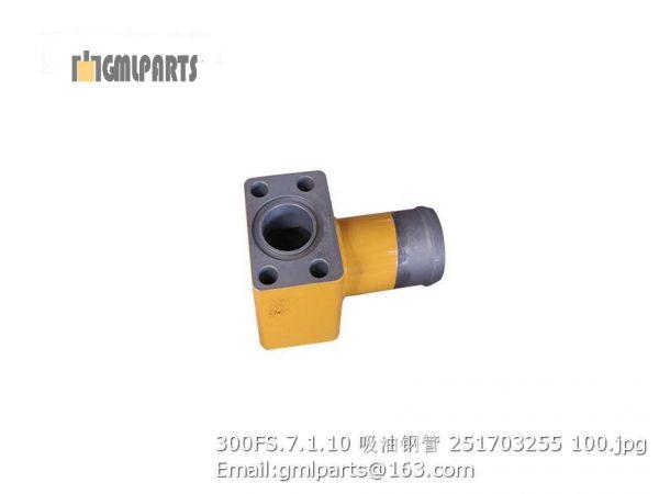 ,251703255 300FS.7.1.10 TUBE