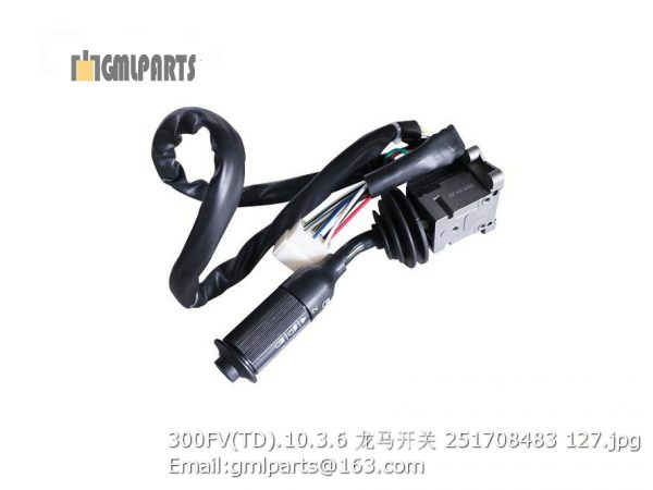,251708483 300FV(TD).10.3.6 Switch