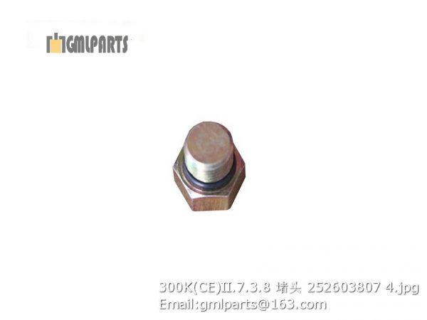 ,252603807 300K(CE)II.7.3.8 PLUG