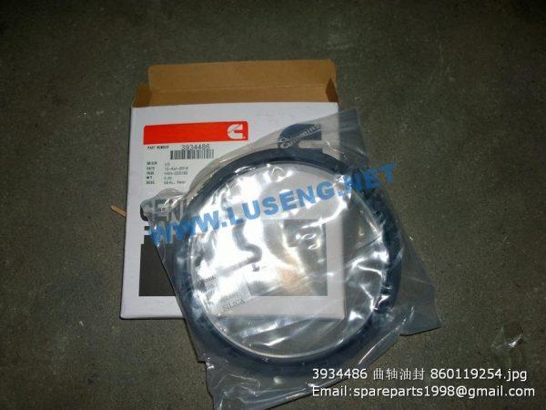 ,3934486 crankshaft oil seal 860119254