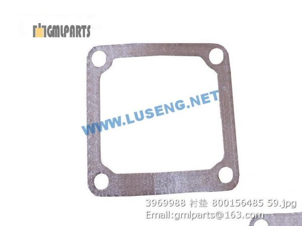 ,800156485 3969988 Connection Gasket