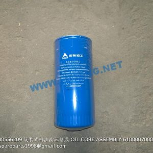 ,4110000556209 OIL CORE ASSEMBLY 61000070005