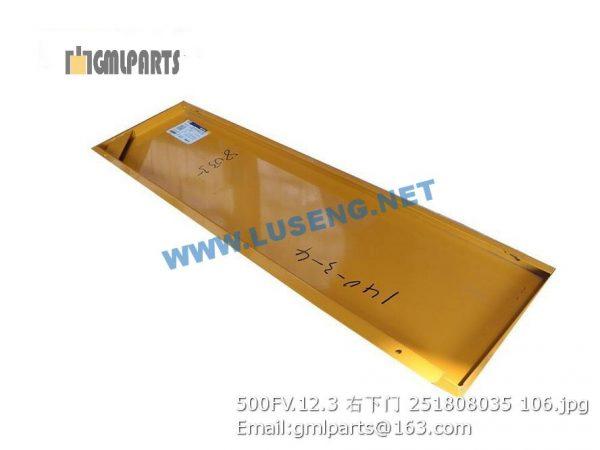 ,251808035 500FV.12.3 RIGHT DOOR