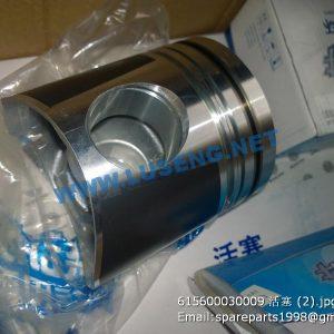 ,615600030009 weichai piston