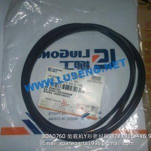 ,80A0760 Y-SEAL 322X315.4X6.9 CLG862