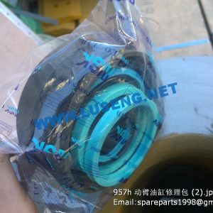 ,CHANGLIN 957H LIFT CYLINDER REPAIR KITS