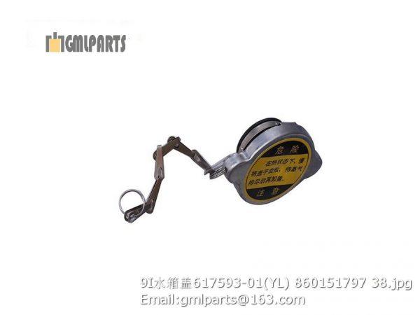 ,860151797 617593-01(YL) water radiator cap