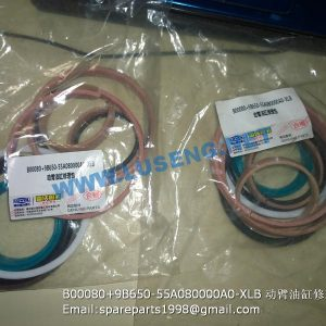 ,B00080+9B650-55A080000A0-XLB LIFT CYLINDER REPAIR KITS