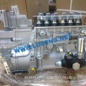 ,BP5B44 BH6P110 CP61Z-P61Z612 injection pump 4110001005486 4110000565197