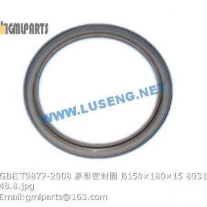 ,803164085 GB/T9877-2008 Oil Seal B150×180×15