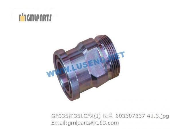 ,803307837 GFS35/35LCFX(J) FLANGE