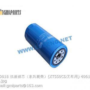 ,406102829 JX0818 XT550CD OIL FILTER CHAOCHAI