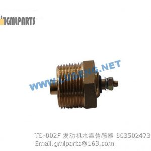 ,803502473 TS-002F WATER TEMPERATURE SENSOR