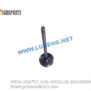 ,800150904 WZ30-25 VALVE INTAKE D30-1003111B