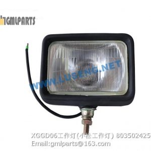 ,803502425 XGGD06 WORKING LAMP 5001380