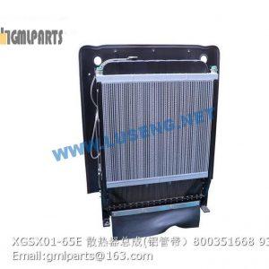 ,800351668 XGSX01-65E LW600KN Radiator Assembly