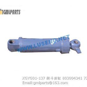 ,803004341 XGYG01-137 tilt cylinder xcmg