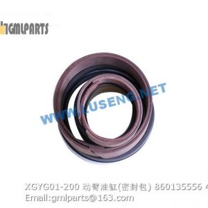 ,860135556 XGYG01-200 xcmg boom cylinder repair kits