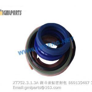 ,860135487 XT752.3.1.3A dump cylinder seals