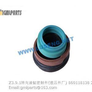 ,860118138 Z3.9.1 steering cylinder seals