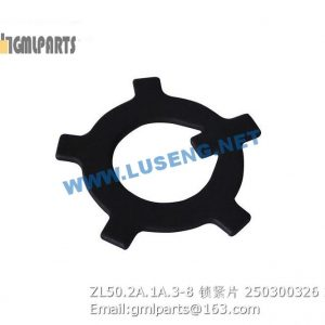 ,250300326 ZL50.2A.1A.3-8 Cushion XCMG