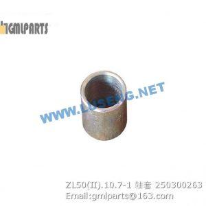 ,250300263 ZL50(II).10.7-1 BUSHING XCMG