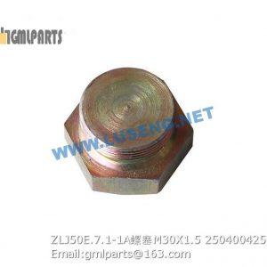 ,250400425 ZLJ50E.7.1-1A PLUG M30X1.5